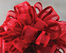 Sheer Elegance Satin Edged Ribbon